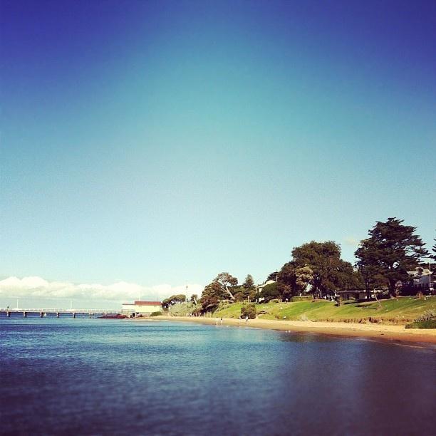 Phillip Island Australia: 90 Best Phillip Island Beaches Images On Pinterest
