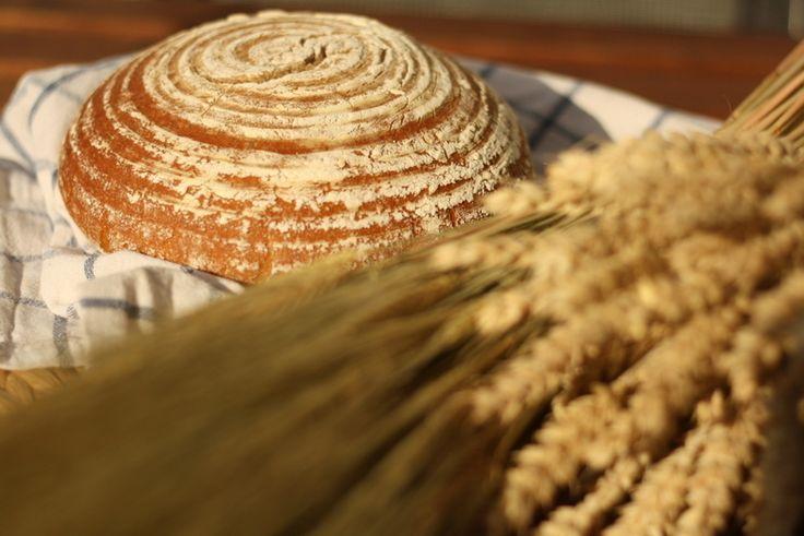 Pečení domácího kváskového chleba | Slovo od slova