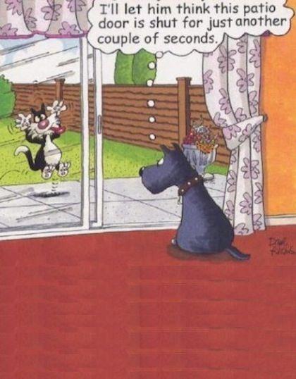 funny cartoon joke 17                                                                                                                                                                                 More