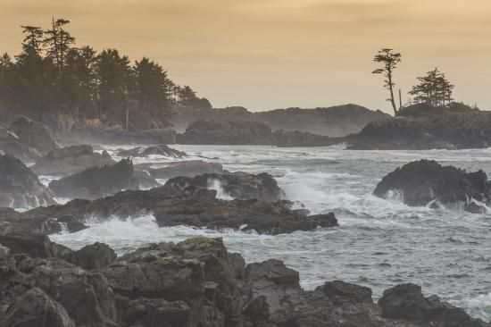 Wild Pacific Trail, Ucluelet: See 1,622 reviews, articles, and 674 photos of Wild Pacific Trail, ranked No.1 on TripAdvisor among 24 attractions in Ucluelet.