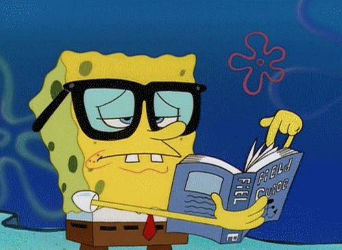 Funny Meme Spongebob : Spongebob meme gifs tenor