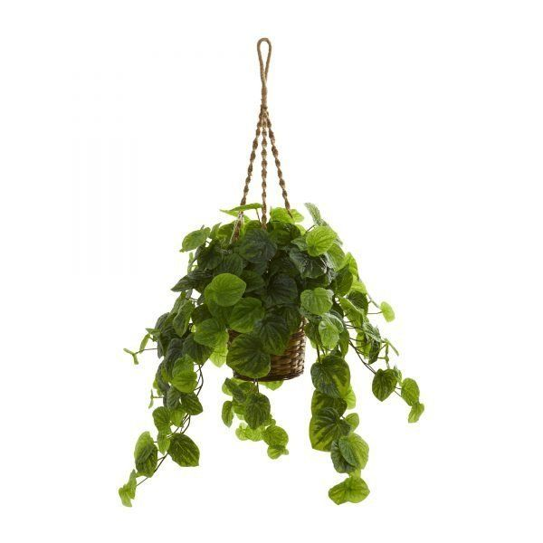 34 H Faux Peperomia Plant In Hanging Basket Real Touch
