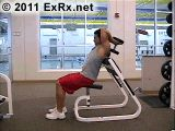 Tricep Extension - Arm (Tricep [Iso])