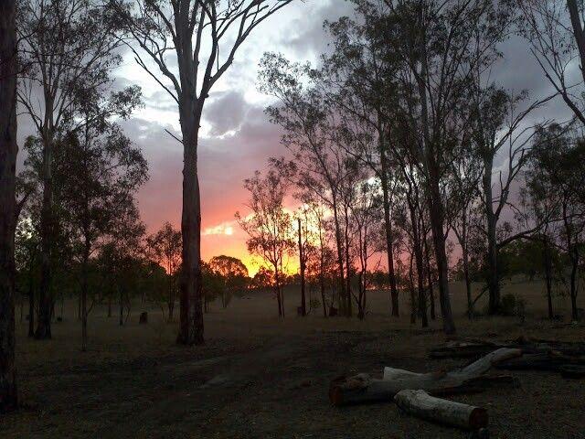 Outback Sunset , Murgon QLD .