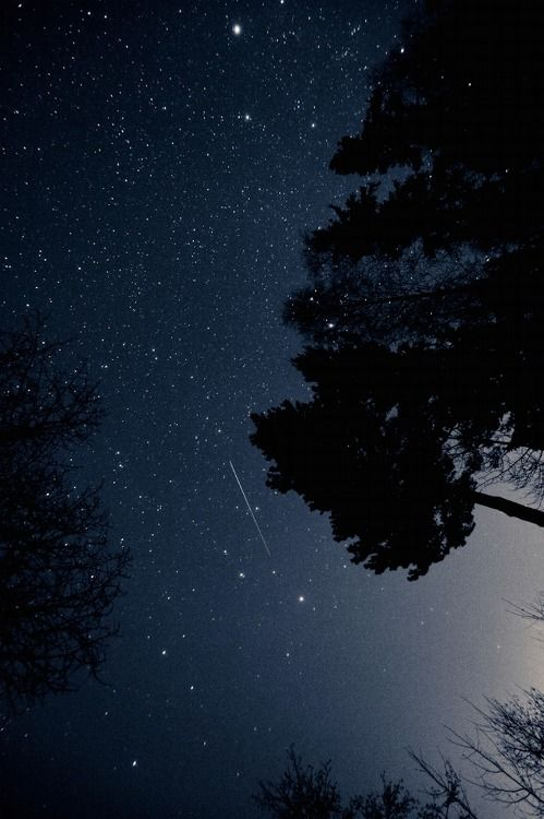 nothing shuts up the little mouth spilling little worries like a glance up here on a clear night. no words. just magnitude. helpless and secure and restored hope