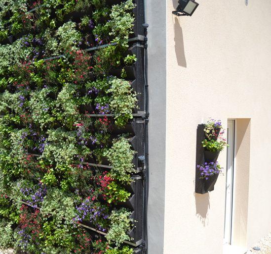 Les 144 meilleures images propos de d co mur v g tal sur for Mur vegetal suspendu