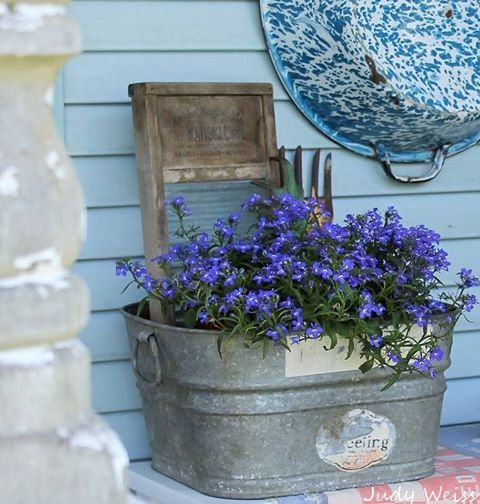 This little wash tub that I found at a barn sale makes a great planter to set on my Potting Shed porch. I love incorporating old vintage items into my potting shed & home. The Lobelia that I have planted in the wash tub has such dainty blue flowers. For a little added interest I tucked an old washboard & a couple of vintage garden tools in the back of the wash tub.