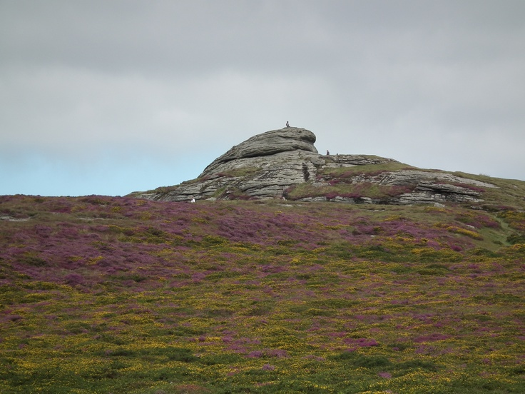 This is Haytor on Dartmoor.  I spent my youth here as a treck leader at Blackslade Riding Centre.  I also enjoyed my wedding reception at the Haytor Manor and Haytor in the background.