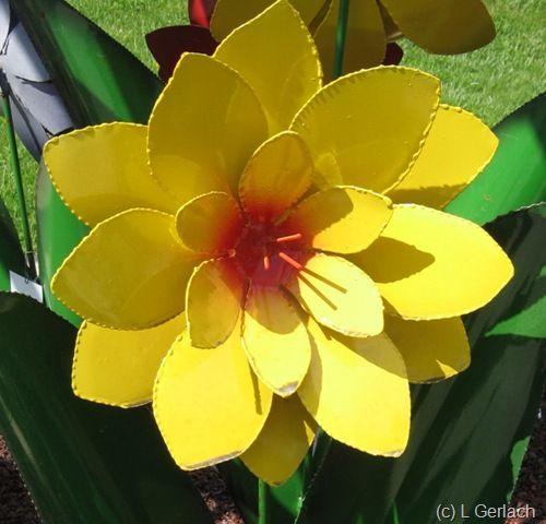 tin flower                                                       …