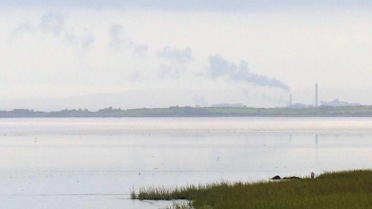 Co. Clare: Fergus Estuary - 'Grey Heron with Chimneys.'