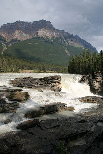 Athabasca Falls near Jasper, Alberta - -> A must see! These falls are awesome! Nice on a hot day with all the spray coming from the falls!