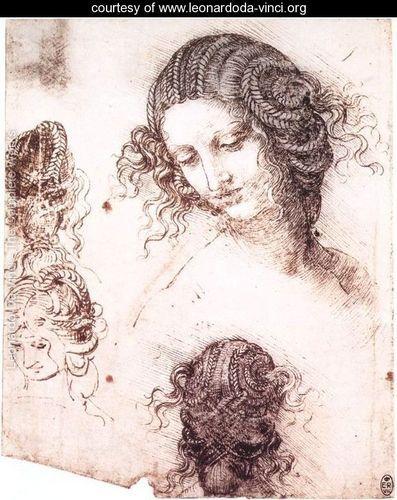 Head of Leda  Leonardo Da Vinci