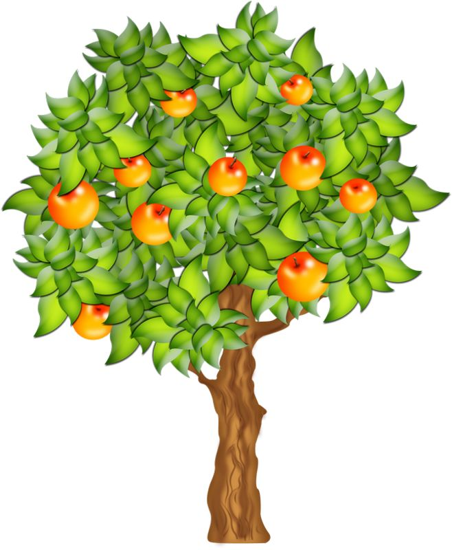 1000 images about cliparts arbres fruitiers on pinterest for Arbre fruitier