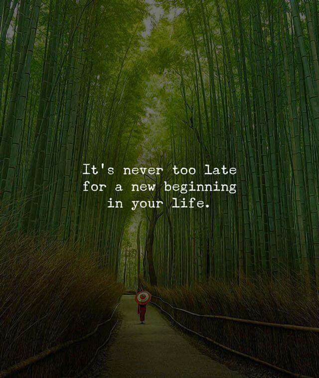 Best 25 New Beginning Quotes Life Ideas On Pinterest: Best 25+ New Beginning Quotes Ideas On Pinterest