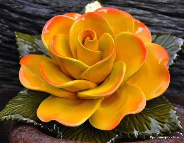 Afbeelding van http://keramiekvoorbuiten.nl/wp-content/uploads/2013/05/1-1-DSC_0387-002-e1378385481201.jpg.