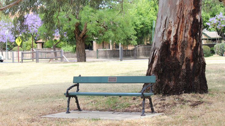 ai believe this photo demonstrates the rule of thirds framing and lines. I like how the tree and park bench are in a 90 degree angle making the shot stand out. iso 200   f6.3 1/200 sec