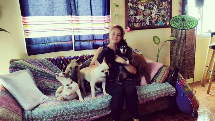 Me and my 5 couch potatoes. – – – #pets #pet #pethotel #cuteanimals #dog #