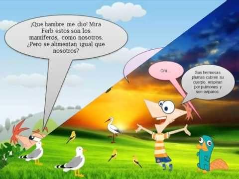 Clasificacion de los os animales al estilo Phineas y Phear