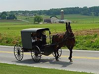 We could learn a lot from the Amish.  I love their way of life.