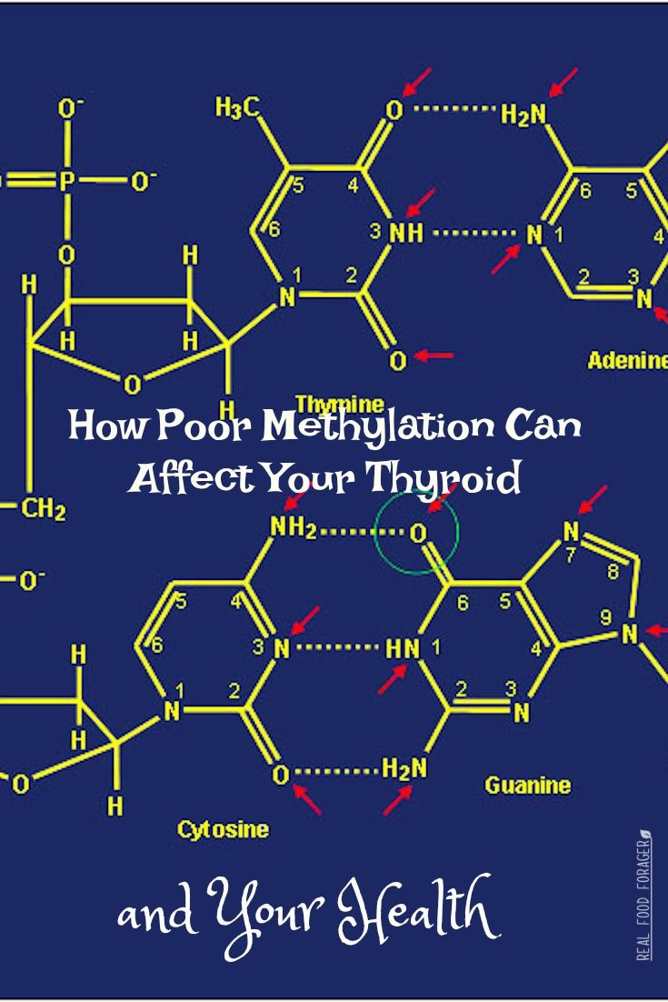 How Poor Methylation Can Affect Your Thyroid and Your Health