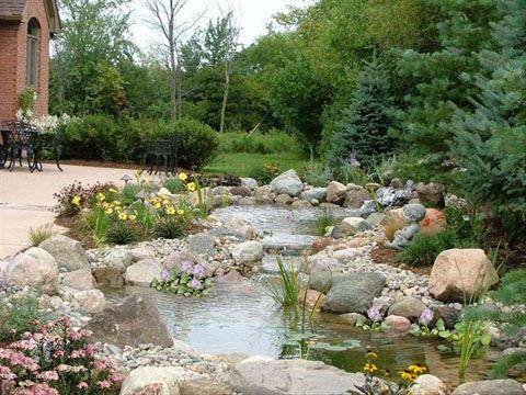 75 best images about turtle ponds on pinterest backyard for Garden pond insert