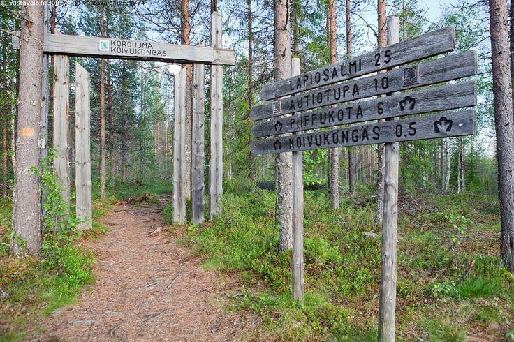 Korouoma Finland | Korouoman retkeilyalue - Korouoma Posio polku luonnonsuolelu retkeily ...