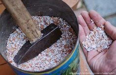 Готовим удобрение из яичной скорлупы