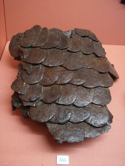 Ancient Roman lorica squamata fragments currently on display at Museum Carnuntinum ( Austria, Bad Deutsch-Altenburg).