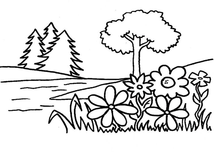 Best Coloring Pages Trees Plants And Flowers