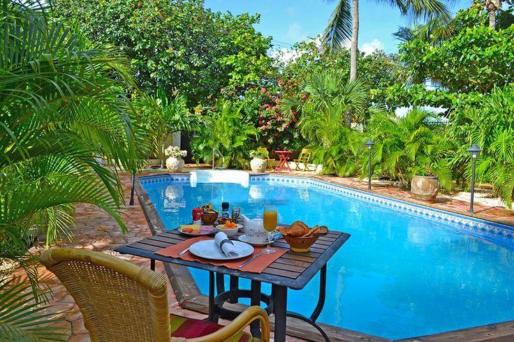 Description: Adult Only hotel met 10 charmante kamers die de zwembadzone omzomen in een rustig wijkje dichtbij Oranjestad en het strand   Ontstressen opkikkeren en jezelf hervinden Wonders Boutique Hotel is een walhalla voor wie wil ontstressen in stijl opkikkeren in elegantie en in alle rust zichzelf wil hervinden. De tien ruime kamers omboorden de sfeervolle zwembadzone in totale harmonie met de tropische beplanting die er welig groeit. Dus strek je hier maar snel uit op een zonnebedje…