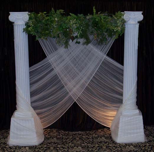 Toga Party Backdrop