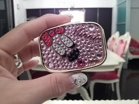 eyelashes case