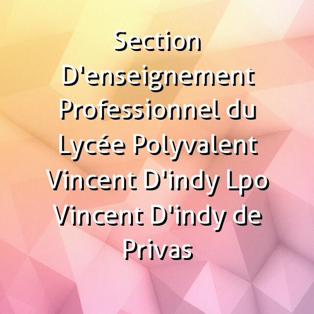 Section D'enseignement Professionnel du Lycée Polyvalent Vincent D'indy Lpo Vincent D'indy de Privas