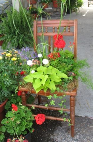 So wanna try this why did I toss that old chair? – Gardening