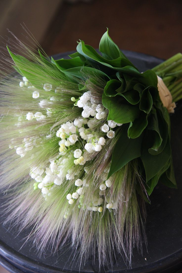 Lily of the valley and Hordeum jubatum