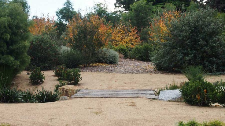 View from the driveway. Cross the foot bridge over the dry creek bed and you enter the newly transformed paddocks. Now a very healthy lush garden.