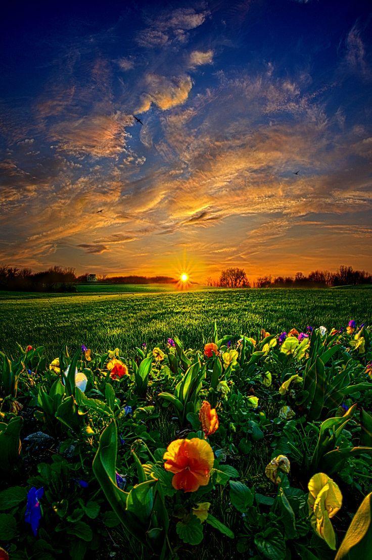 Resultado De Imagem Para Natural Landscape Paisajes Primaverales Hermosos Paisajes Paisaje De Fantasia