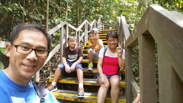 HSBC Tree Top Walk - Jul 2015