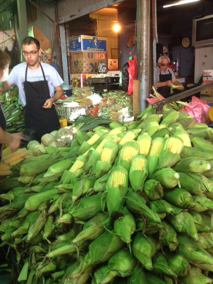 Gator Emilia visited the La Vega market every week to stock up on fresh fruit and vegetables while studying abroad in Chile. #SFSU
