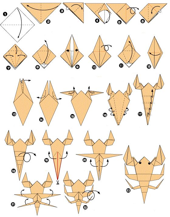 25 best ideas about origami dragon on pinterest origami