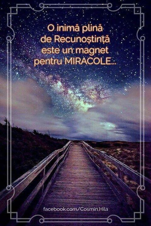 O inimă plină de Recunoștință este un magnet pentru MIRACOLE... Seară frumoasă prieteni... oriunde v-ați afla!