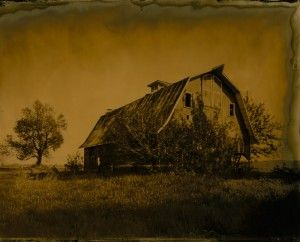 Great advice on scanning in your wetplate shots.