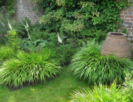 an urn is cushioned with Hakonechloa macra, white foxglovesand Polystichum ferns - Amanda Patton design