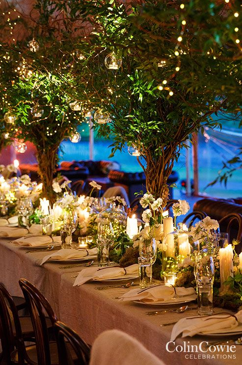 The reception space is transformed into an enchanted garden overflowing with white floral arrangements, candlelight and lush green trees sprouting from tables.
