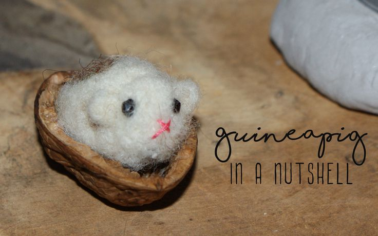 Needle felted Guineapig in a walnutshell.