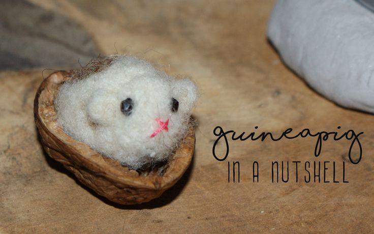 Needle felted Guineapig in a walnutshell.