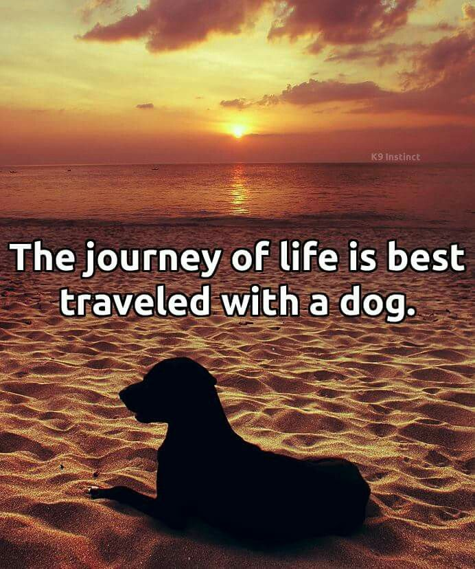 Very True - they make the journey so much more fun