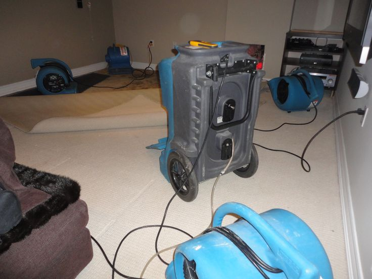 Pin by Jaya shree on Flooddoctorva Cleaning upholstery