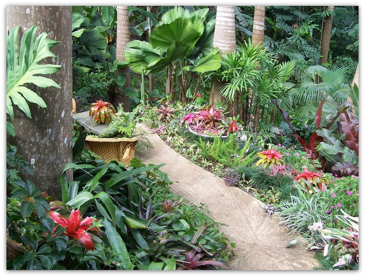 Art Symphony Barbados... Barbados, Beautiful gardens