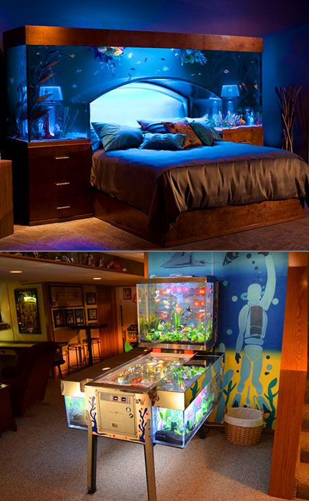 wayde king and brett raymer from discoverys tanked create a stunning overhead bed aquarium plus they transform a pinball machine into a giant fish tank